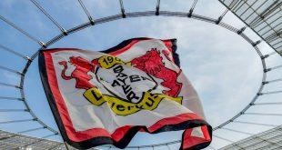 40 Jahre Bundesliga: Leverkusen feiert mit Klublegenden