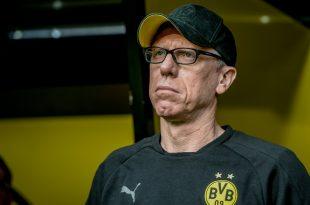 Peter Stöger steht vor einer Rückkehr zu Austria Wien