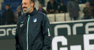 Pellegrino Matarazzo ist neuer Trainer vom VfB Stuttgart