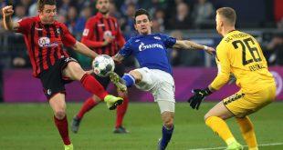 Schalke und Freiburg teilten sich die Punkte