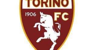 Unternehmer wollen den FC Turin kaufen