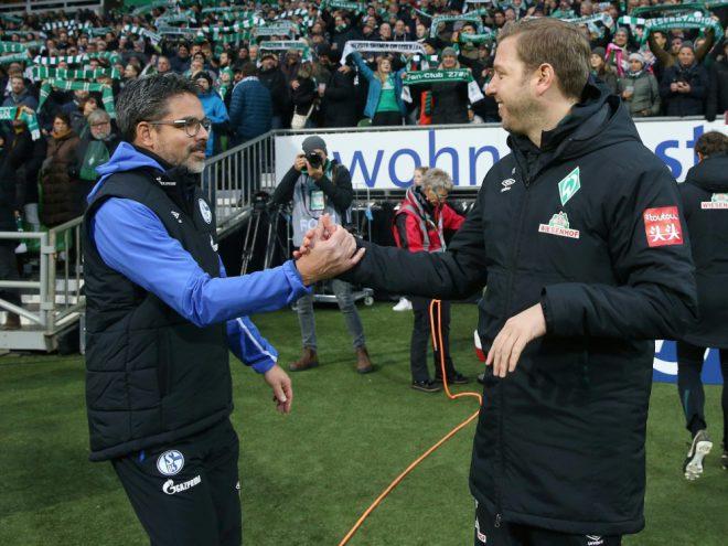 Duell auf Augenhöhe zwischen Schalke und Werder