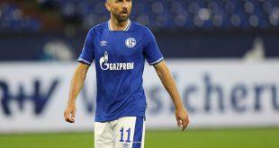 Schalke 04 löst Vertrag mit Ibisevic zum Jahresende auf