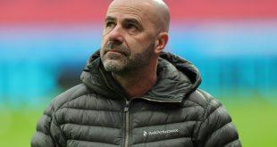 Bayer-Trainer Peter Bosz beklagt neun verletzte Spieler