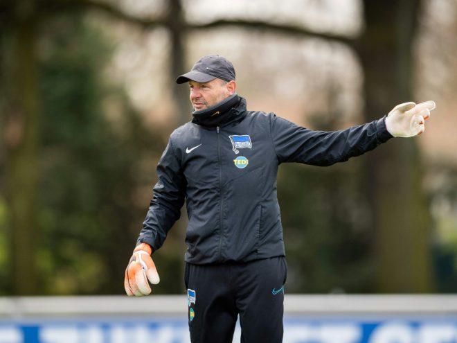 Petry ist von der Hertha freigestellt worden